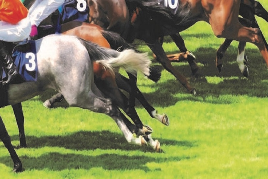 Programme announced for the Horseracing Industry Conference Image