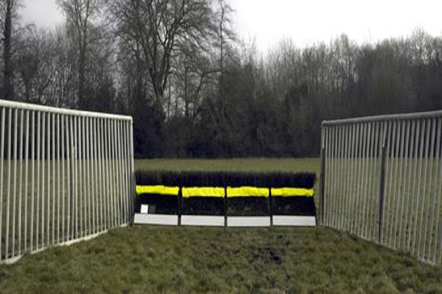 Racing Foundation funded equine vision research leads to trial of new fence design Image