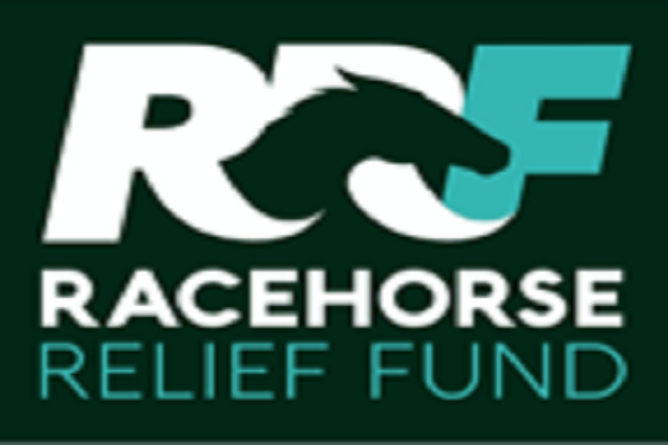 Racehorse Relief Fund launched supporting 'at risk' horses and preventing equine abandonment Image